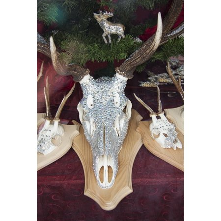 Decorated Crystal (Canvas Print Swarovski Beads Decorated Crystal Deer Antler Stretched Canvas 10 x 14)