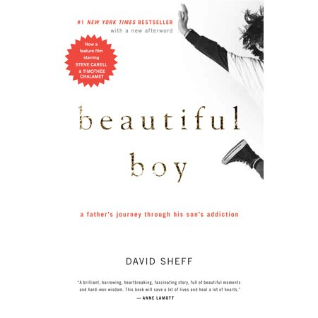Beautiful Boy : A Father's Journey Through His Son's (Increasing Your Chances Of Conceiving A Boy)