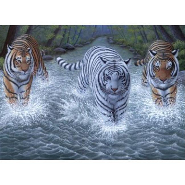 Royal & Langnickel PJL34 11 .25 x 15 .37 Junior Large Set Three Tigers
