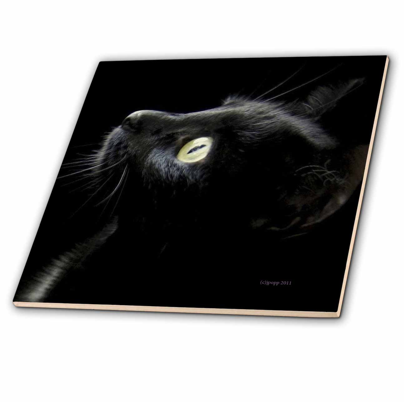 3dRose ct/_23822/_3 Black Cat Face Ceramic Tile 8-Inch