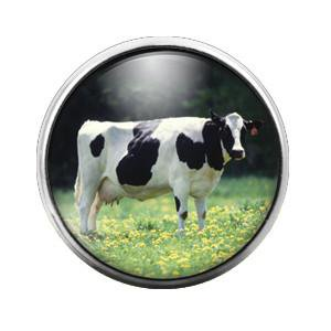 Cow - 18MM Glass Dome Candy Snap Charm - Cow Tale Candy