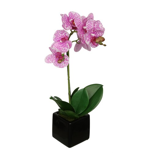 House of Silk Flowers Inc. Artificial Baby Orchid Flowers in Pot