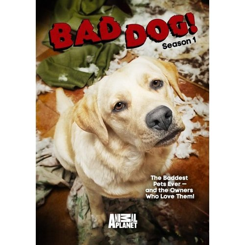 Bad Dog! Season One (Widescreen) by
