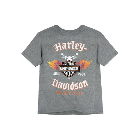 Harley-Davidson Little Boys' Flames & Shield Short Sleeve Tee, Gray 1580665 (4), Harley -