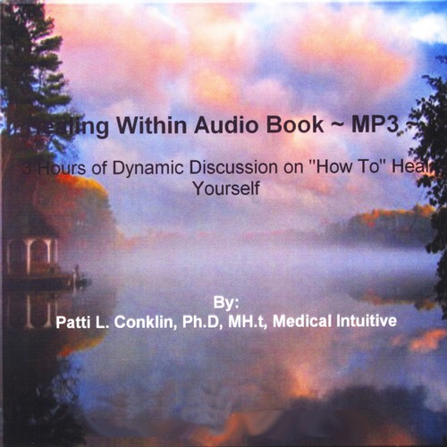 Patti Conklin Healing Within Audio Book [CD] by