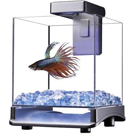 Aqua culture betta cube with led light for Betta fish light