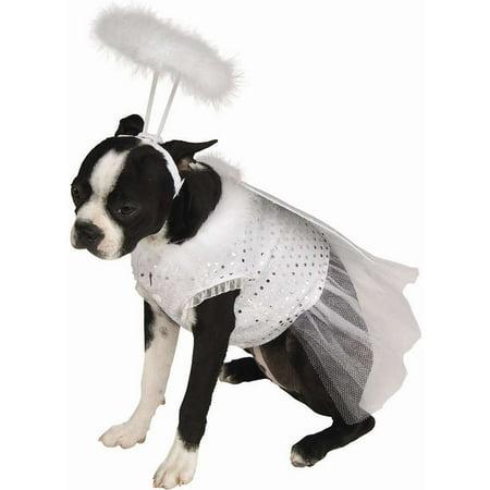 Angel Dog Costume](Angel Dog)