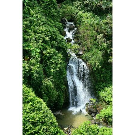 USA Hawaii Islands One of many waterfalls along Hamakua Coast with water cascading into pond Big Island Canvas Art - Peter French  Design Pics (22 x (1 Waterfall)