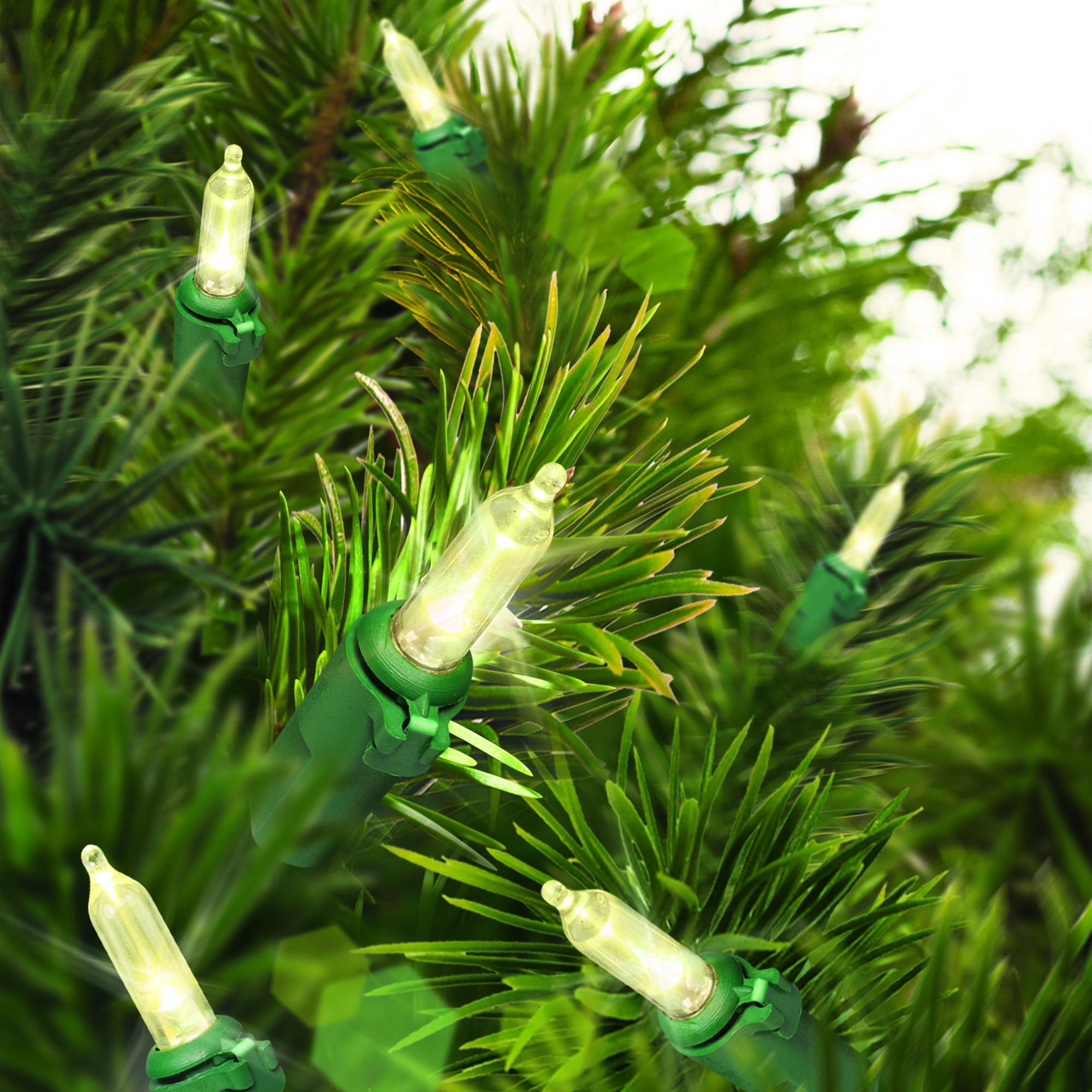 Holiday Time Christmas Wedding Lights  50 Led Warm White Mini Lights Green Wire