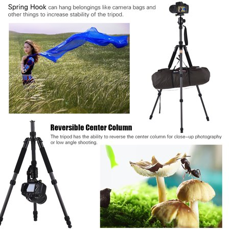 """Andoer TP-668SC Portable Carbon Fiber Tripod Photography Travel Tripod Monopod with Panoramic Ball Head 4-Section Max. Height 145cm 1/4"""" Screw Mount for Canon Nikon Sony DSLR/ILDC Cameras Max. Load 8k - image 6 of 7"""