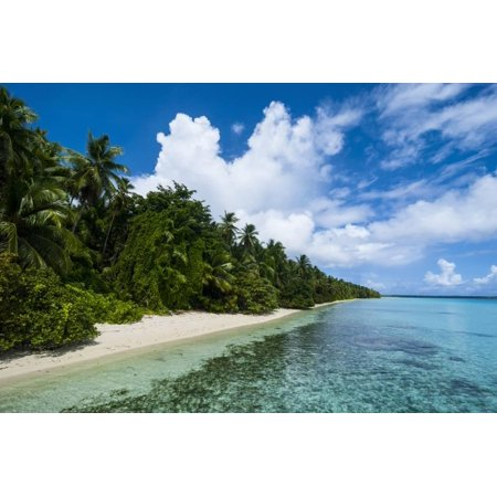 Paradise White Sand Beach in Turquoise Water in the Ant Atoll, Pohnpei, Micronesia Print Wall Art By Michael -