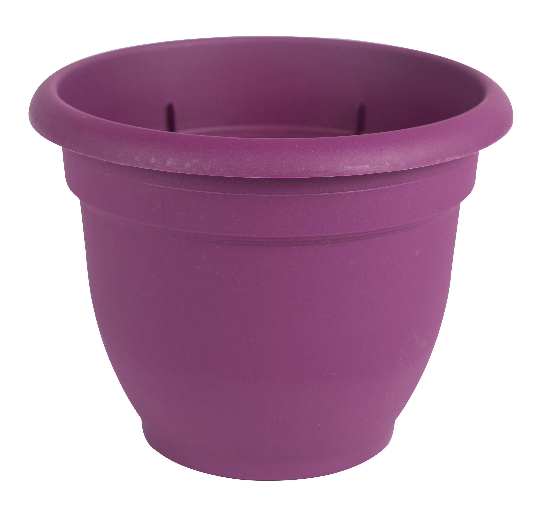 "Bloem Ariana Self Watering Planter 10"" Passion Fruit by Bloem"