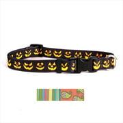 Yellow Dog Design MELS103L Melon Stripes Standard Collar - Large