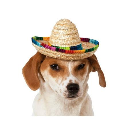 Halloween Multicolor Pet Sombrero - Large Sombrero