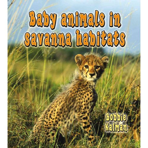 Baby Animals in Savanna Habitats