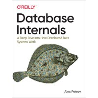Database Internals: A Deep Dive Into How Distributed Data Systems Work (Paperback)
