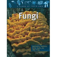 Fungi : Mushrooms, Toadstools, Molds, Yeasts, and Other Fungi