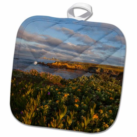 - 3dRose Piedras Blancas Lighthouse, Big Sur, California - US05 CHA0148 - Chuck Haney - Pot Holder, 8 by 8-inch