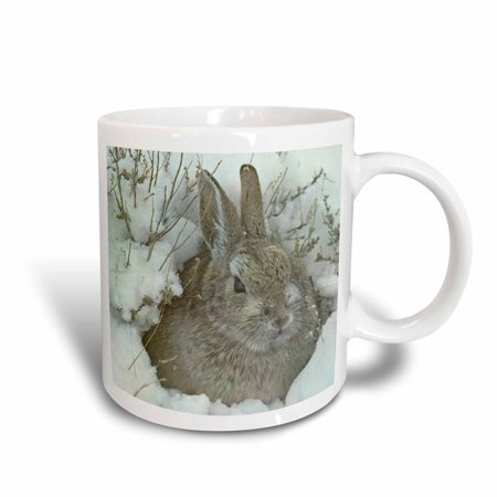 White Ceramic Bunny (3dRose Snow Bunny, Ceramic Mug,)