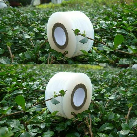 Image of 2/3cm x 100m Garden Grafting Tape, Gardening Flower Vegetable Plant Repair Film 2CM Green