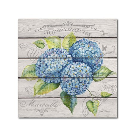 Trademark Fine Art 'Blue Hydrangeas' Canvas Art by Jean Plout