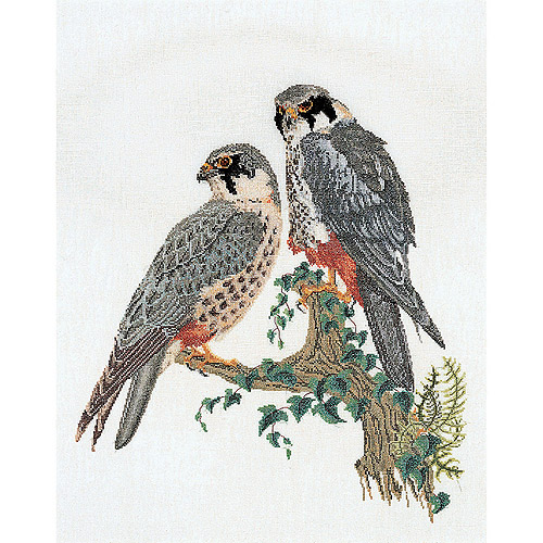 Thea Gouverneur Counted Cross-Stitch Kit, Falcons