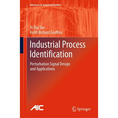 Industrial Process Identification - eBook