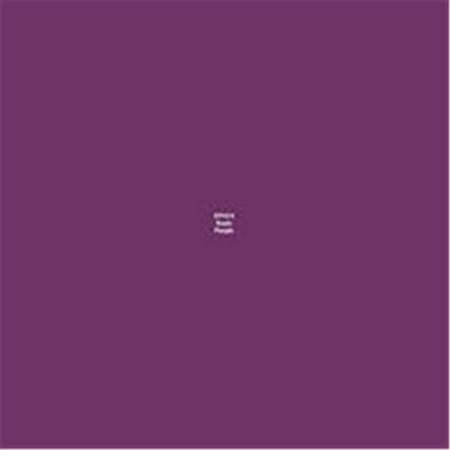 - 0.5 oz Master Series Paint Bones Dropper Bottle, Runic Purple