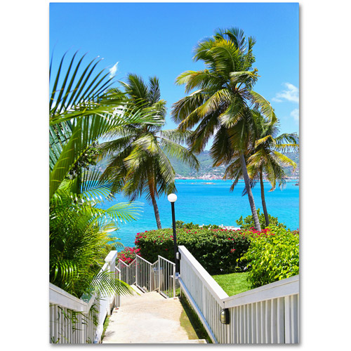 "Trademark Fine Art ""Virgin Islands 3"" Canvas Art by CATeyes"