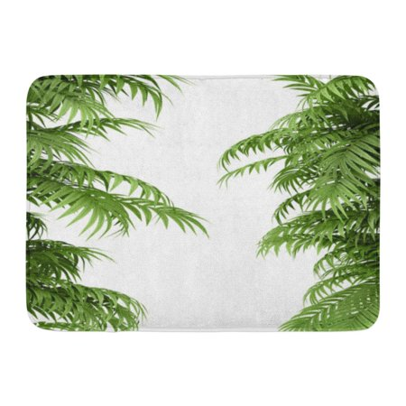 GODPOK Rhapis Green Grove Tropical Plant Fernleaf Hedge Bamboo Branches on White Excelsa Thicket Rug Doormat Bath Mat 23.6x15.7