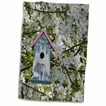 3dRose Nest box in blooming Sugartyme Crabapple tree. Marion, Illinois, USA. - Towel, 15 by