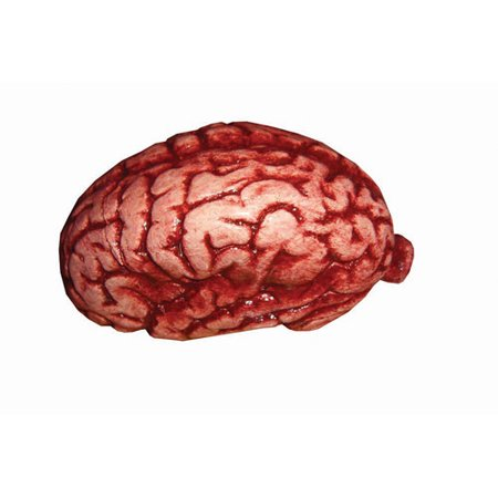Latex Brain Halloween Accessory (Halloween Make Up Latex)
