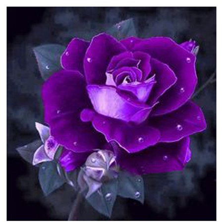 Rhinestone DIY Painting Diamond Purple Rose Cross-stitch School Wall Decor Embroidery Picture Needlework Stitchwork (Picture Stitch)