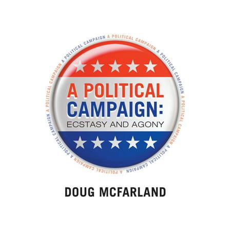 A Political Campaign - eBook