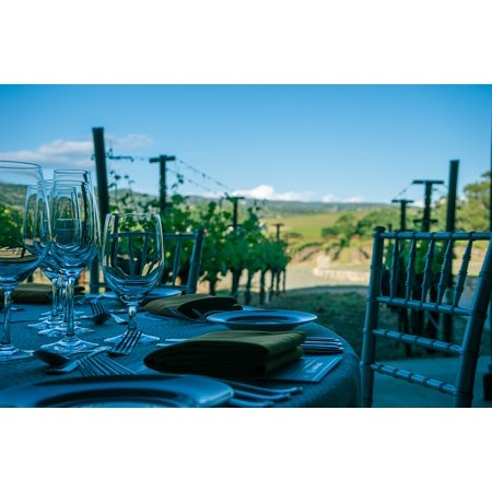 Canvas Print Wine Vineyard Vine California Napa Valley Napa Stretched Canvas 10 x 14