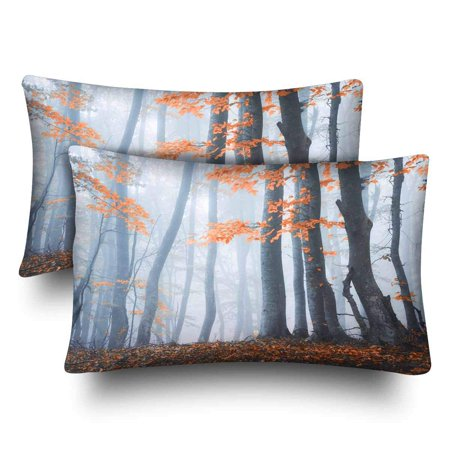 GCKG Autumn Forest Colorful Landscape Trees Leaves Branches Pillow Cases Pillowcase 20x30 inches Set of 2 Pillow Covers Protector - image 1 of 4