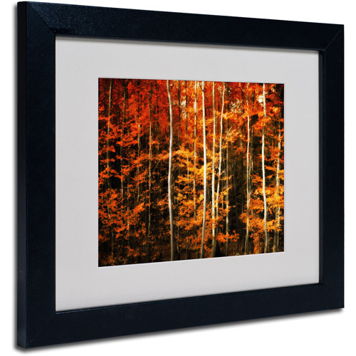 "Trademark Fine Art ""Still Painting"" Canvas Art by Philippe Sainte-Laudy, Black Frame"