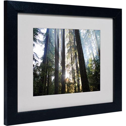 "Trademark Fine Art ""Sunrays"" Matted Framed Art by Pierre Leclerc"
