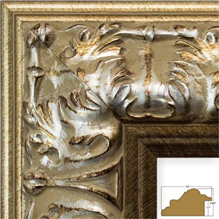 Craig Frames 8081 11 By 14 Inch Picture Frame Ornate Finish 36