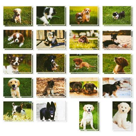 Cute Halloween Postcards (40 Pack Puppy Dog Postcards Bulk Set - All Occasion Assorted Blank Post Cards Greeting Bulk Box Set - 4 x 6)