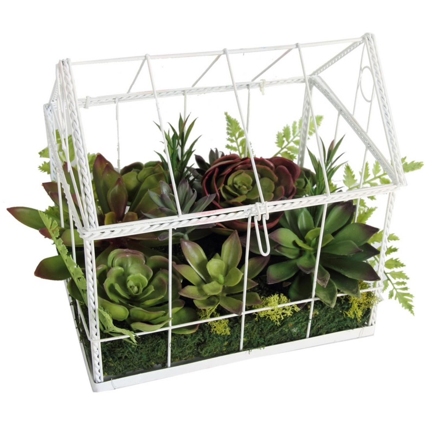 "14.5"" Artificial Succulent Garden in Decorative Greenhouse by A & B Home"
