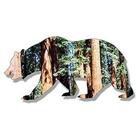 1970's Sticker - California Bear Shaped SEQUOIA Sticker Decal (national park ca rv) 3 x 6 inch