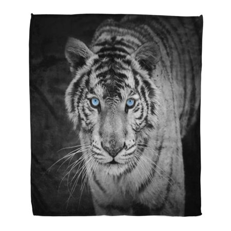 HATIART Throw Blanket Warm Cozy Print Flannel Black White Tiger Panther Eye Snow Comfortable Soft for Bed Sofa and Couch 58x80 Inches - image 1 de 1