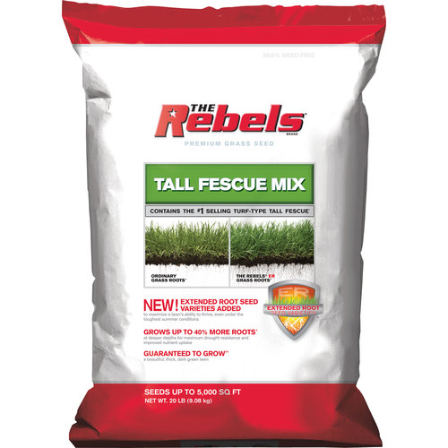 REBEL TALL FESCUE MIX 20#