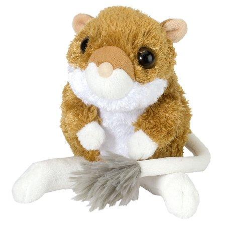 CK-Mini Kangaroo Rat 8