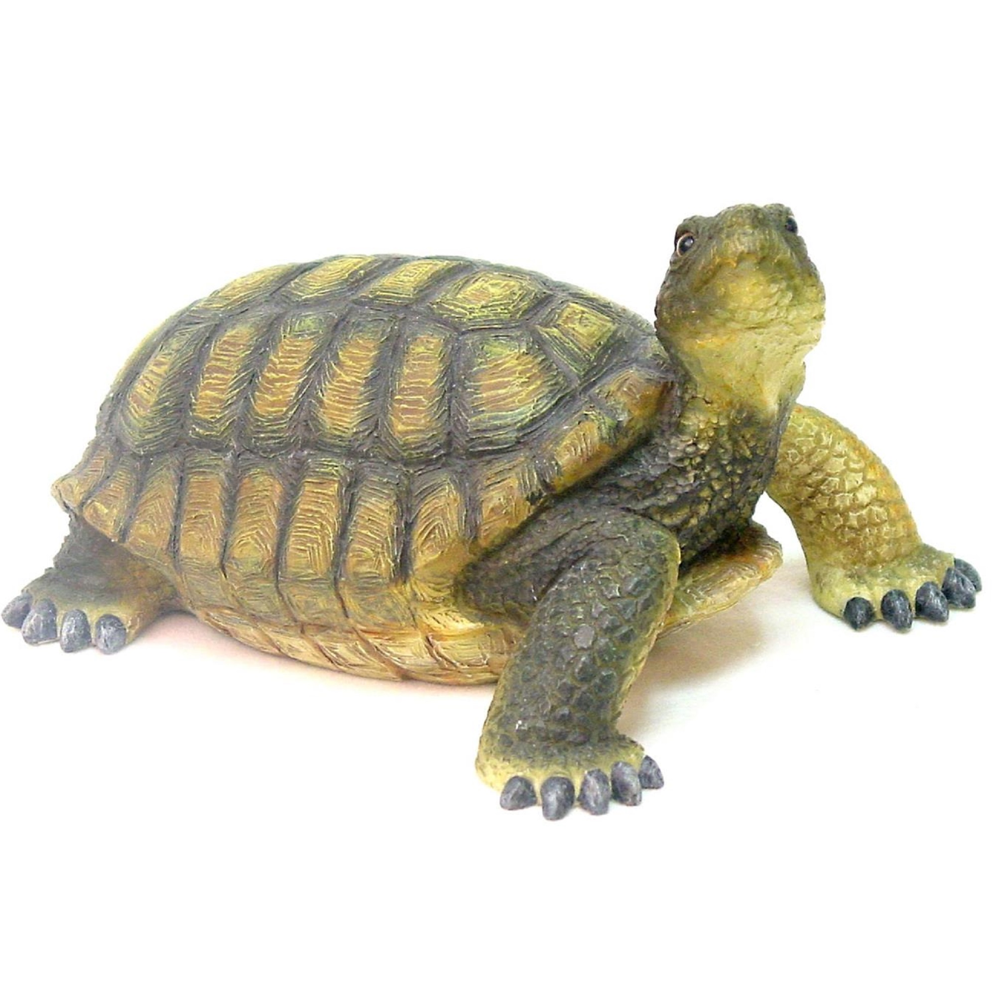 """Homestyles 13""""L Realistic Large Box Turtle Home & Garden Nature Animal Statue"""