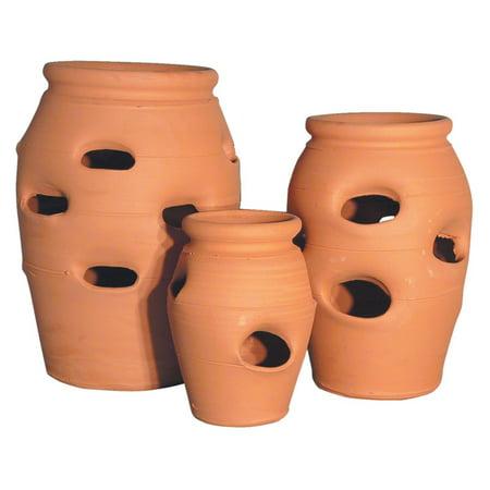 Craven Pottery Classic Terracotta Strawberry Herb Jar Planter ()