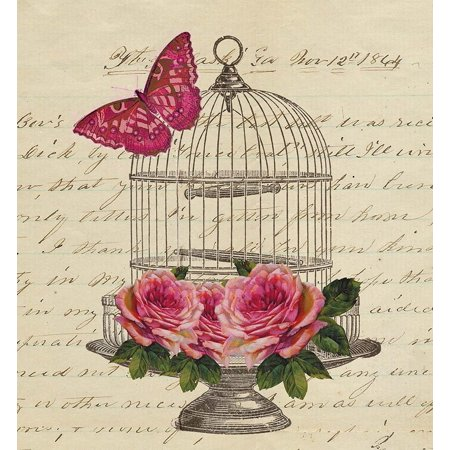 Birdcage And Butterfly Poster Print by AV Art (12 x 12)