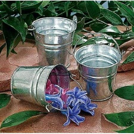Small Metal Buckets (Fun Express Mini Metal Buckets (1)