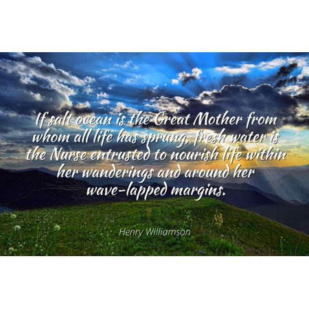 Fresh Henna - Henry Williamson - Famous Quotes Laminated POSTER PRINT 24x20 - If salt ocean is the Great Mother from whom all life has sprung, fresh water is the Nurse entrusted to nourish life within her wanderin
